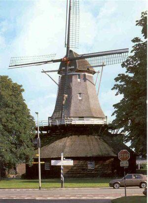 molendewijk1991